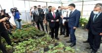 BAKAN PAKDEMİRLİ ''ORDU DA İNÇELEMELERDE BULUNDU