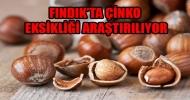 FINDIK'DAKİ BOŞ OLUŞUMU ENGELLEYECEK ARAŞTRMA