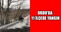 ORDU'DA 11 İLÇE'DE YANGIN