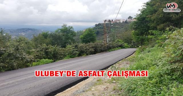 ULUBEY'DE ASFALT ÇALIŞMASI