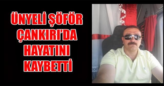 ÜNYE'Lİ TIR ŞÖFÖRÜ ÇANKIRI'DA KAZA YAPTI